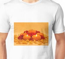"""Then We Had Pumpkin Pie"" Unisex T-Shirt"