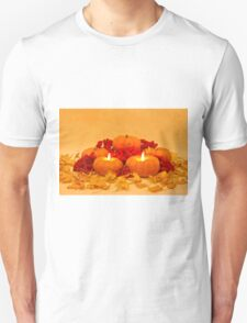 """Then We Had Pumpkin Pie"" T-Shirt"
