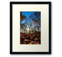A London Park Framed Print