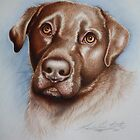 BRUD The Chocolate Labrador. Acrylic paint and Pencil Crayon 2011 by Louise Elisabeth Hunt
