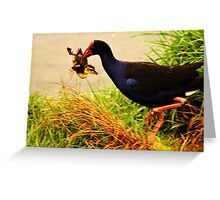 Duckling for Dinner? Greeting Card