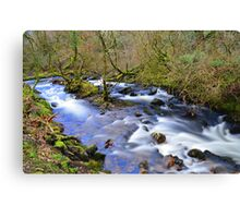 Dartmoor: The River Taw in Belstone Cleave Canvas Print