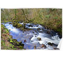 Dartmoor: The River Taw in Belstone Cleave Poster
