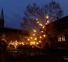 Christmas Lights at St. Mary's by Themis