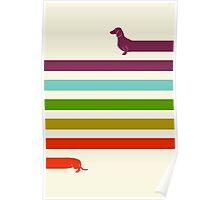 (Very) Long Dachshund Poster