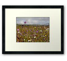 Summer in the Burren Framed Print