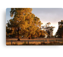 The Golden Time Of Day Canvas Print