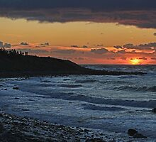 Sandford Sunset by Debbie  Roberts