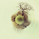 Tiny Planet: Bristol by Dan Rubin