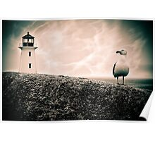 Peggy's Cove Seagull & Lighthouse Poster