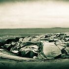 Peggy's Cove Pano (1:3 Crop) by jphphotography
