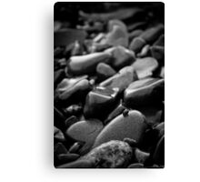 Pebbles and Snail Canvas Print