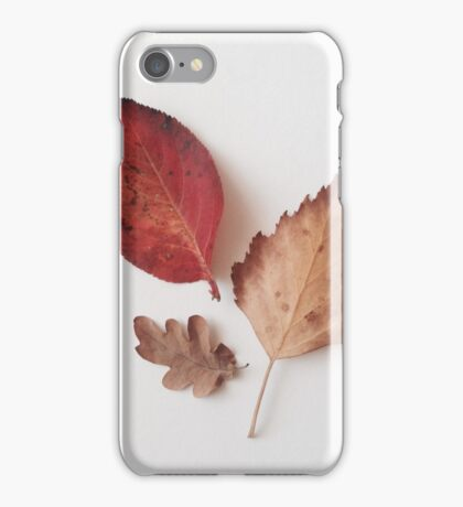 Three fallen leaves iPhone Case/Skin