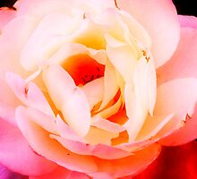 Natural Beauty by AlyZen