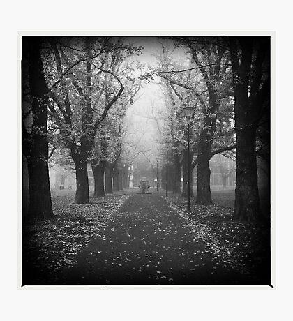 Fog. Photographic Print