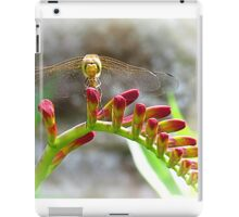 The dragon-fly returned iPad Case/Skin