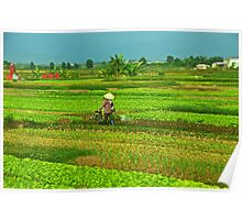 Watering the crops Poster