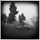 Fog. III by tbartoshyk