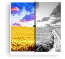 Contrast Landscape Canvas Print