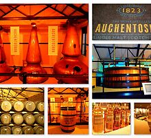 Auchentoshan Distillery by ©The Creative  Minds