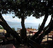 Cafeteria with Beautiful View and a Big Tree Silhouette by keem