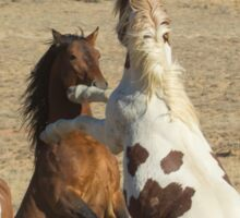 Fighting Wild Horses-Signed-2700 Sticker