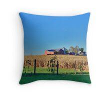 Farm In New Market Throw Pillow