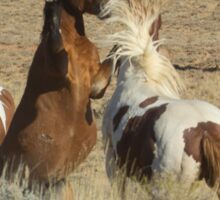 Fighting Wild Horses-Signed-2701 Sticker