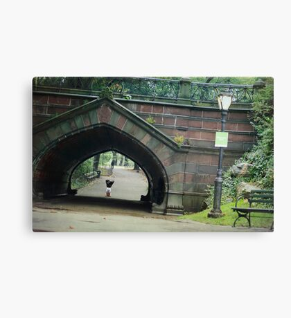 Headstand in full lotus at Central Park Canvas Print