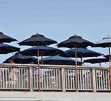Seafood Shanty Umbrellas by phil decocco