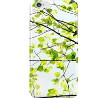 Portraits of Nature - autumn-green iPhone Case/Skin