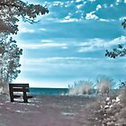 Presque Isle Bench by gzupruk