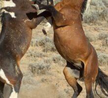 Fighting Wild Horses-Signed-2725 Sticker