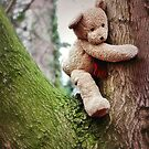 Tree Hugging by Astrid Ewing Photography