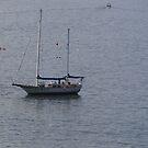 Boat - Barco by PtoVallartaMex
