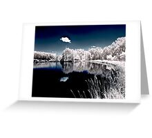 Teeter IR Reflection Greeting Card