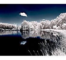 Teeter IR Reflection Photographic Print