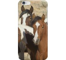 Painted Sisters-Signed-2603 iPhone Case/Skin