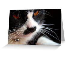 Look into my eyes.... Greeting Card