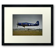 Hawker Sea Fury in flight Framed Print