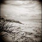 { sun, surf, sand } by Lucia Fischer