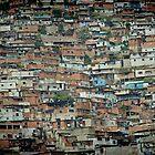Caracas Ranchos © by Dawn M. Becker