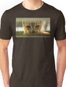 Community Cat Unisex T-Shirt