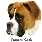 Boxers Rock (My Buddy) by Tim Denny