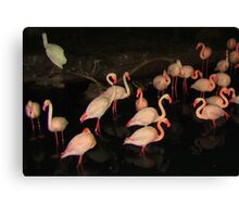 DISNEY FLAMINGOS Canvas Print