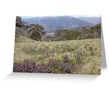 Snow Plains - Mt Wills, North East Victoria, Australia Greeting Card