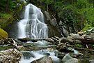 Moss Glen Falls - Midstream by Stephen Beattie