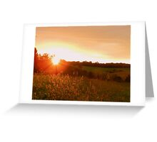 Sunset in the Golden Grass Greeting Card