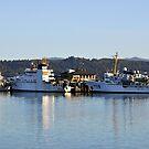 Ships Across The Bay by scenebyawoman