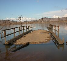 Old Bethanga Bridge Crossing, Lake Hume. Victoria by Jenny Enever